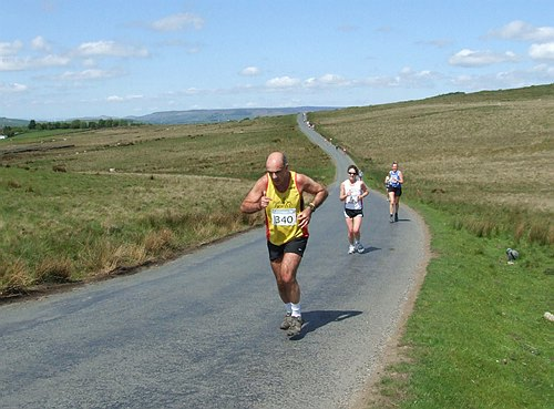 Photo PUDSEY PACERS.jpg copyright © 2020 Terry Lonergan